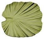 Taca w kształcie liścia palmy NATURAL COLLECTION z melaminy zielona 35x34 cm, APS 83446