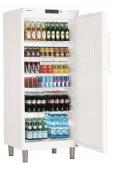 Szafa chłodnicza GKv 5730, 1-drzwiowa, drzwi pełne, sterowanie elektroniczne, biała, poj. 586 l