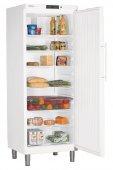 Szafa chłodnicza GKv 6410, 1-drzwiowa, drzwi pełne, sterowanie elektroniczne, biała, poj. 664 l