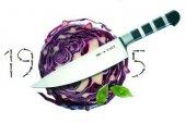 Nóż kucharski SERIA 1905, 15 cm DICK 8194715