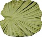 Taca w kształcie liścia palmy NATURAL COLLECTION z melaminy zielona 27x27 cm,APS 83865